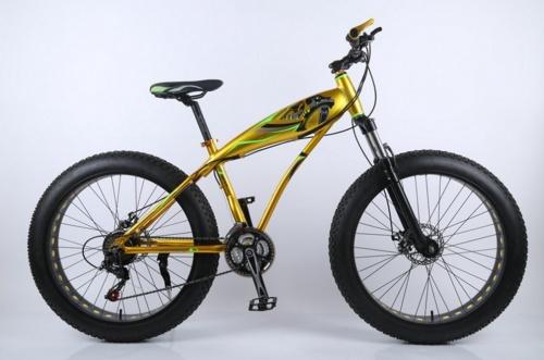 Xe đạp lốp bánh to Cá Mập thể thao Chợ bán sản phẩm xe điện đẹp tốt cao cấp uy tín giá rẻ