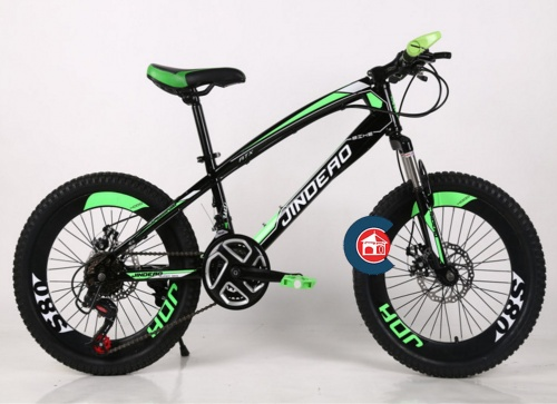 Xe đạp leo núi bánh to Jindeao Chợ bán sản phẩm xe điện đẹp tốt cao cấp uy tín giá rẻ